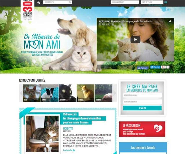 En-memoire-de-mon-ami.fr : hommage à nos amis les bêtes disparues