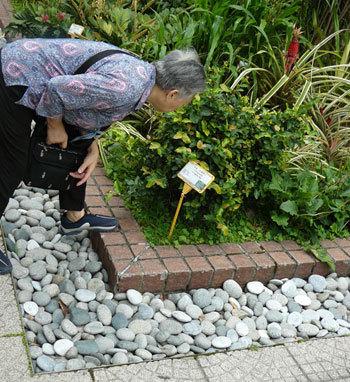 Environnement : des aînés peu concernés…