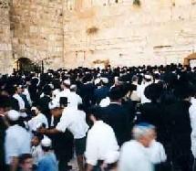 Israël - Une plus forte proportion de seniors dans la diaspora