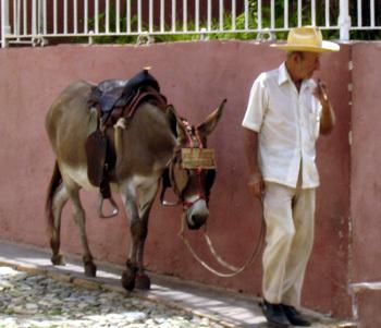 Cuba : des implants péniens gratuits pour les hommes souffrant d'impuissance