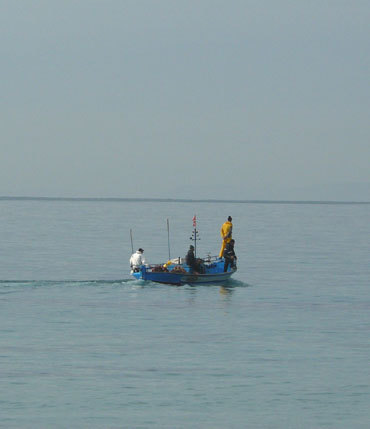 Pêcheurs au petit matin, Nabeul