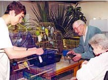 Jeunes et seniors gardent des animaux domestiques durant l'été dans une maison de retraite