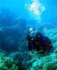 Plongée Seniors Aventure, une formation spécifique pour obtenir votre brevet de plongée