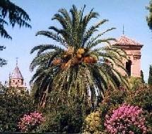 Maisons de retraite : augmentation de 7% du parc espagnol prévue pour 2006