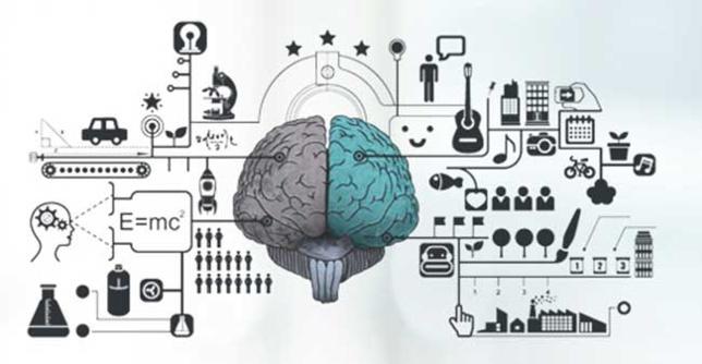 MindFit, logiciel de stimulation intellectuelle pour les seniors