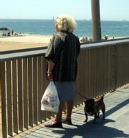 Un million de dollars pour une maison de retraite avec chiens et chats