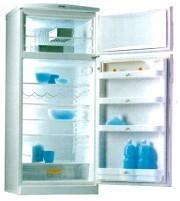 Listeria : la bactérie des réfrigérateurs peut provoquer de graves infections chez les seniors