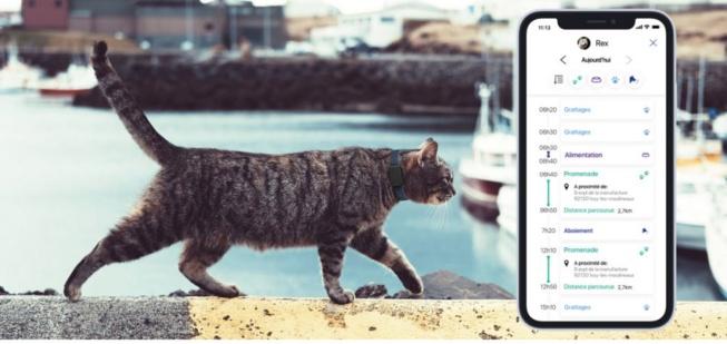 Pet Tracker met votre animal de compagnie sous surveillance rapprochée