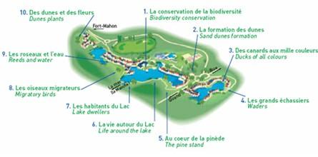 Découvrir et comprendre la nature le temps d'une balade dans un éco-village de la Baie de Somme