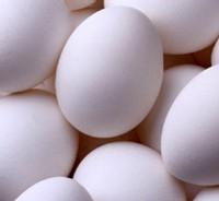 Les œufs : bien adaptés aux besoins nutritionnels et au style de vie des seniors