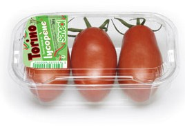 Tomate Torino de Savéol