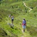 Parc naturel régional Livradois-Forez : de courts séjours au coeur d'un étonnant territoire !