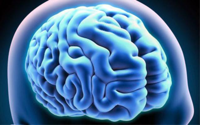 Bilinguisme, cerveau et personnes âgées…