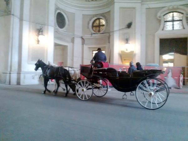 Calèche à Vienne