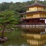 Japon – Le gouvernement doit prendre en compte le futur déclin de la population active