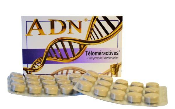 ADN-Téloméractives : un complément réparateur d'ADN
