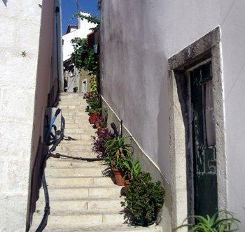 Préférez les escaliers pour préserver votre santé !