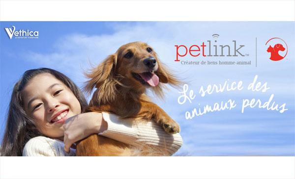Petlink : une médaille pour retrouver chiens et chats égarés