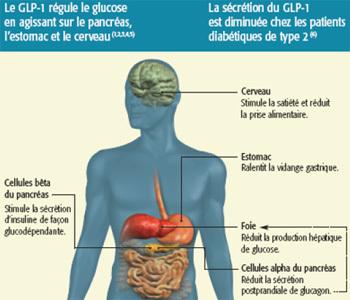 diabète definition pdf