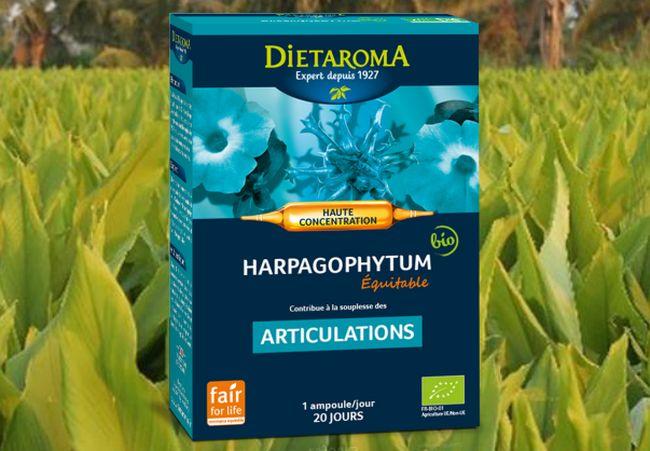 Diétaroma Harpagophytum