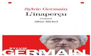 L'inaperçu de Sylvie Germain : Madame sans haine