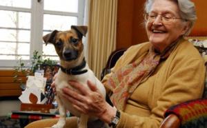 Versailles : des « agents canins » rendent visitent aux seniors isolés…