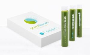 Green bloom : nouvelle boisson bien-être à base de microalgues