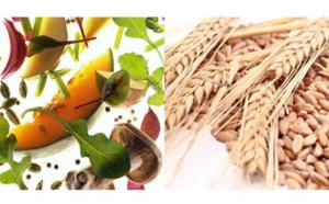 Salon Bien-être, Médecine douce et Thalasso : végétarisme, manger cru et sans gluten