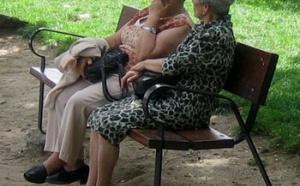 Pouvoir d'achat, logement, mode de vie : comment vivrons-nous à la retraite ?
