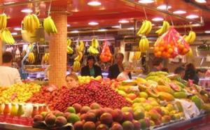 Equilibre nutritionnel : comment choisir les bons aliments ? Comment les combiner ?