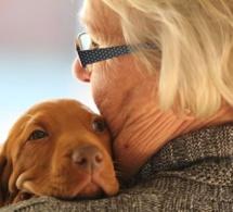 Avoir un chien est bon pour la santé des seniors