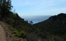 Massif de l'Estérel : profitez des week-ends de mai pour découvrir cette magnifique réserve biologique